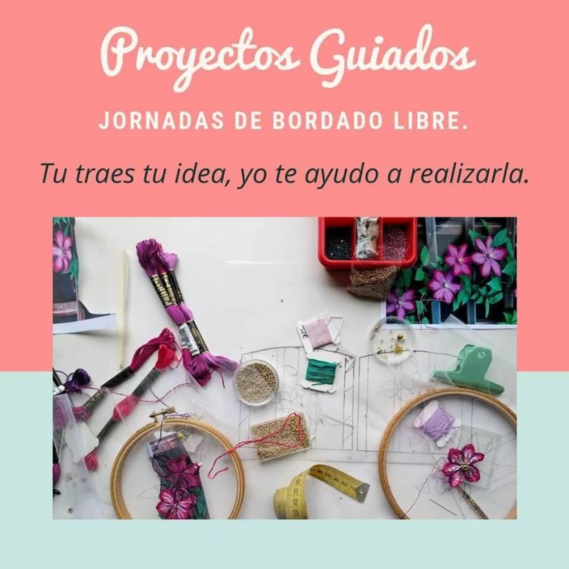 proyectos guiados
